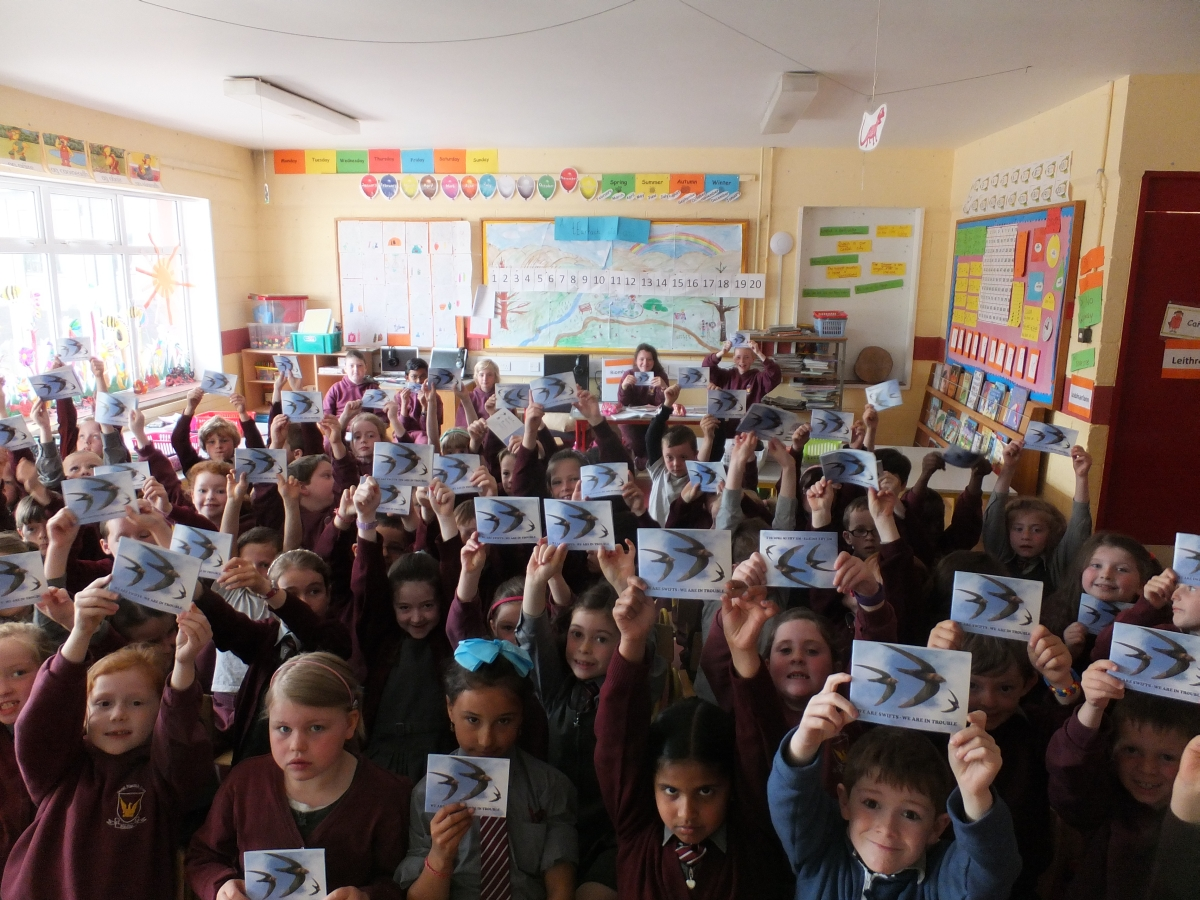 Breaffy National School pupils with their swift booklets.