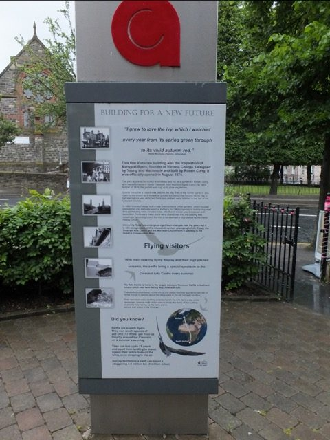 The Crescent Arts Centre poster with information about swifts.