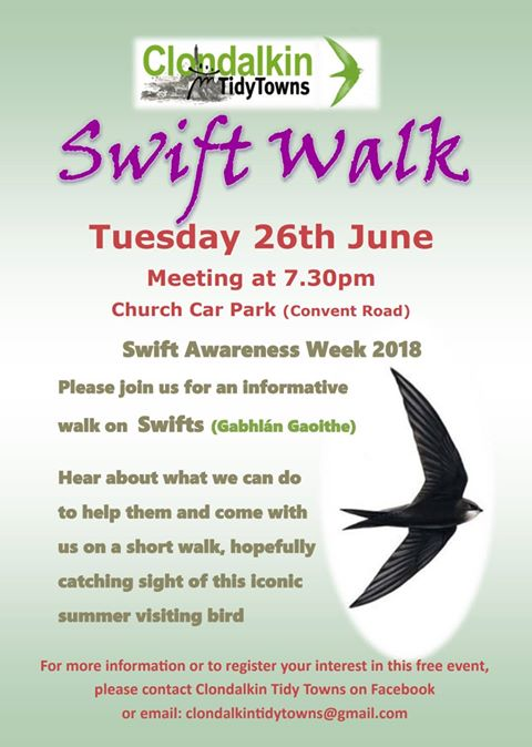 Swift Walk at Clondalkin, Dublin on 26th June 2018